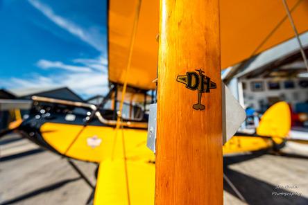 DH Moth Flight